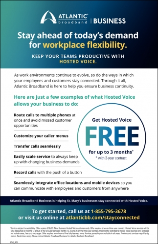 Get Hosted Voice Free For Up To 3 Months