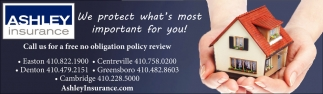 We Protect What's Most Important For You!