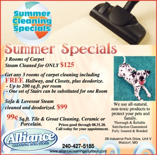 Summer Cleaning Specials