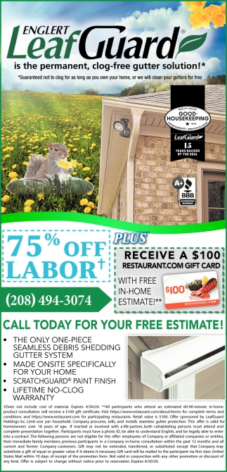 Is The Permanent, Clog Free Gutter Solution