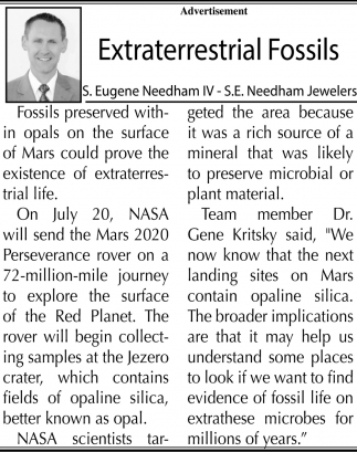 Extraterrestrial Fossils