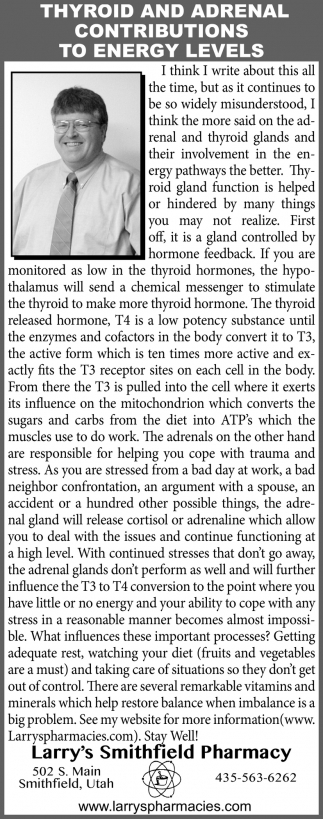 Thyroid And Adrenal Contributions To Energy Levels