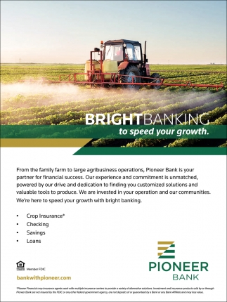 Bright Banking to speed your growth