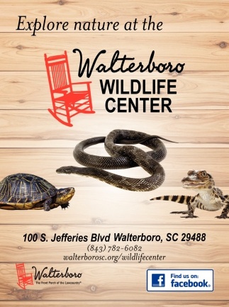 Explore Nautre At The Walterboro Wildlife Center