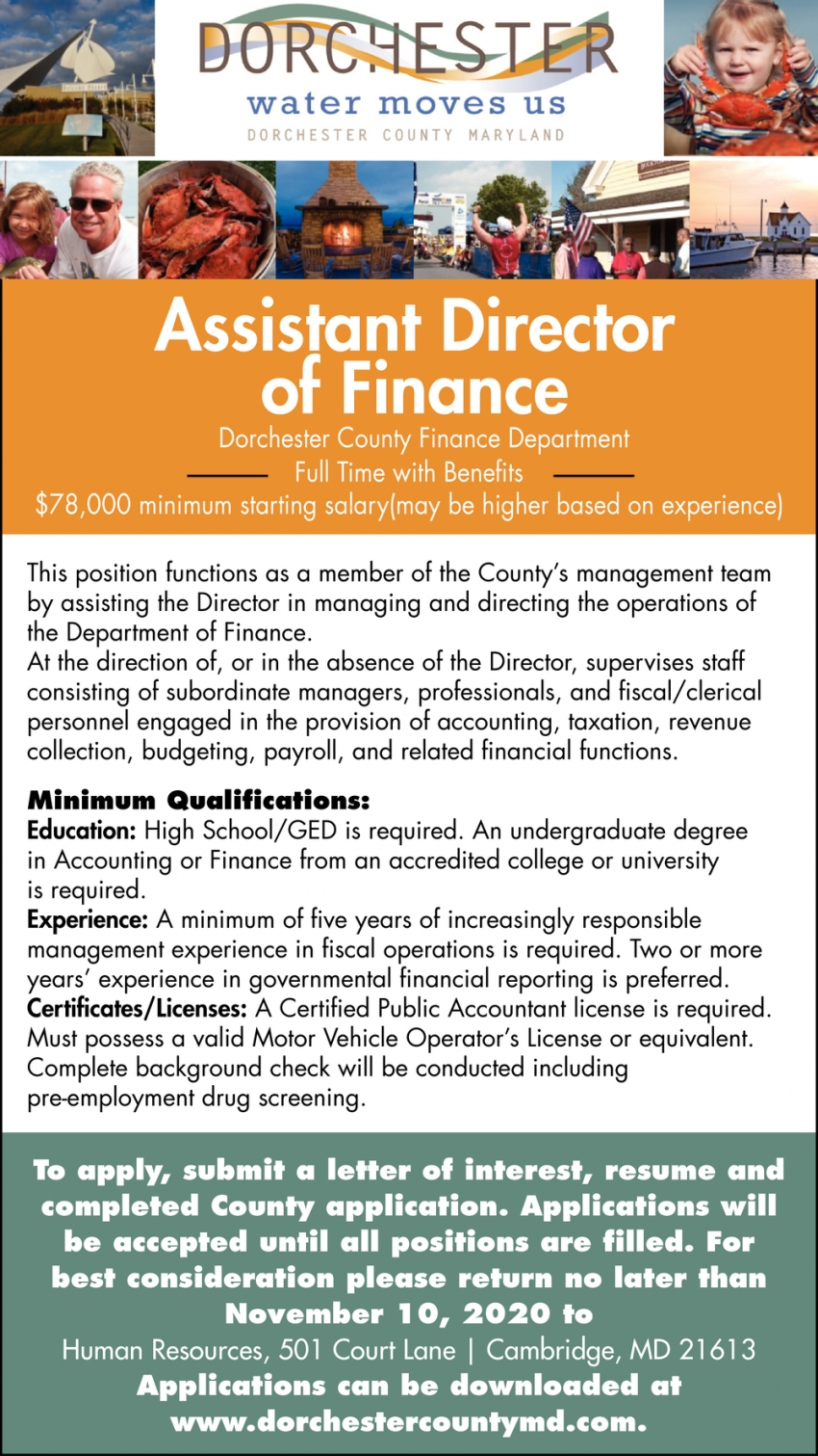 Assistant Director Of Finance