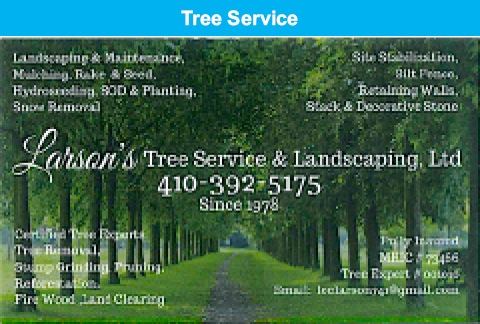 Landscaping & Maintenance