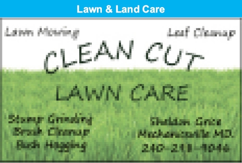 Lawn Mowing - Leaf Cleanup