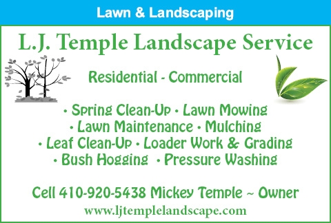 Spring Clean Up - Lawn Mowing