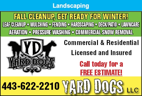 Fall Clean Up: Get Your Yard Ready For Winter!