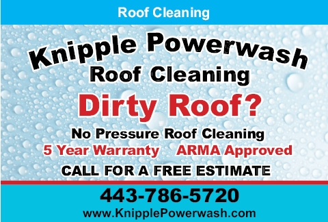 Dirty Roof? No Pressure Roof Cleaning
