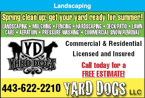 Spring Clean Up: Get Your Yard Ready For Summer!