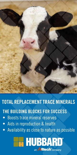 Total Replacement Trace Minerals