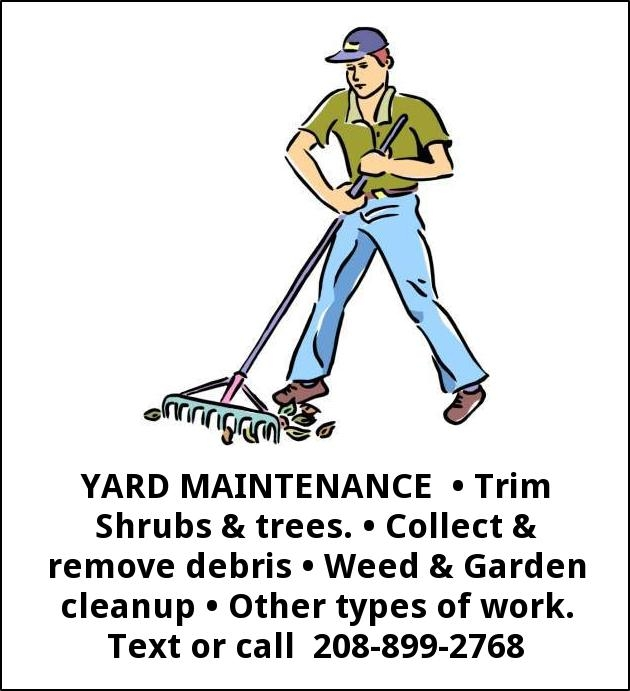 Yard Maintenance