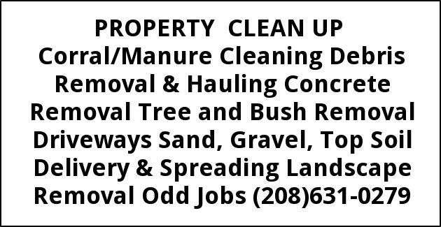 Porperty Clean Up
