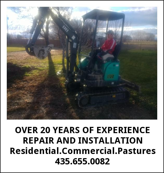 Over 20 Years of Experience