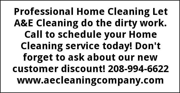Professional Home Cleaning