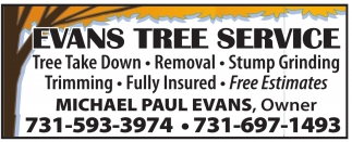 Take Down, Removal, Stump Grinding.