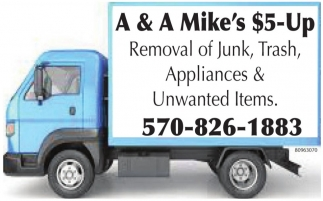 Removal of Junk