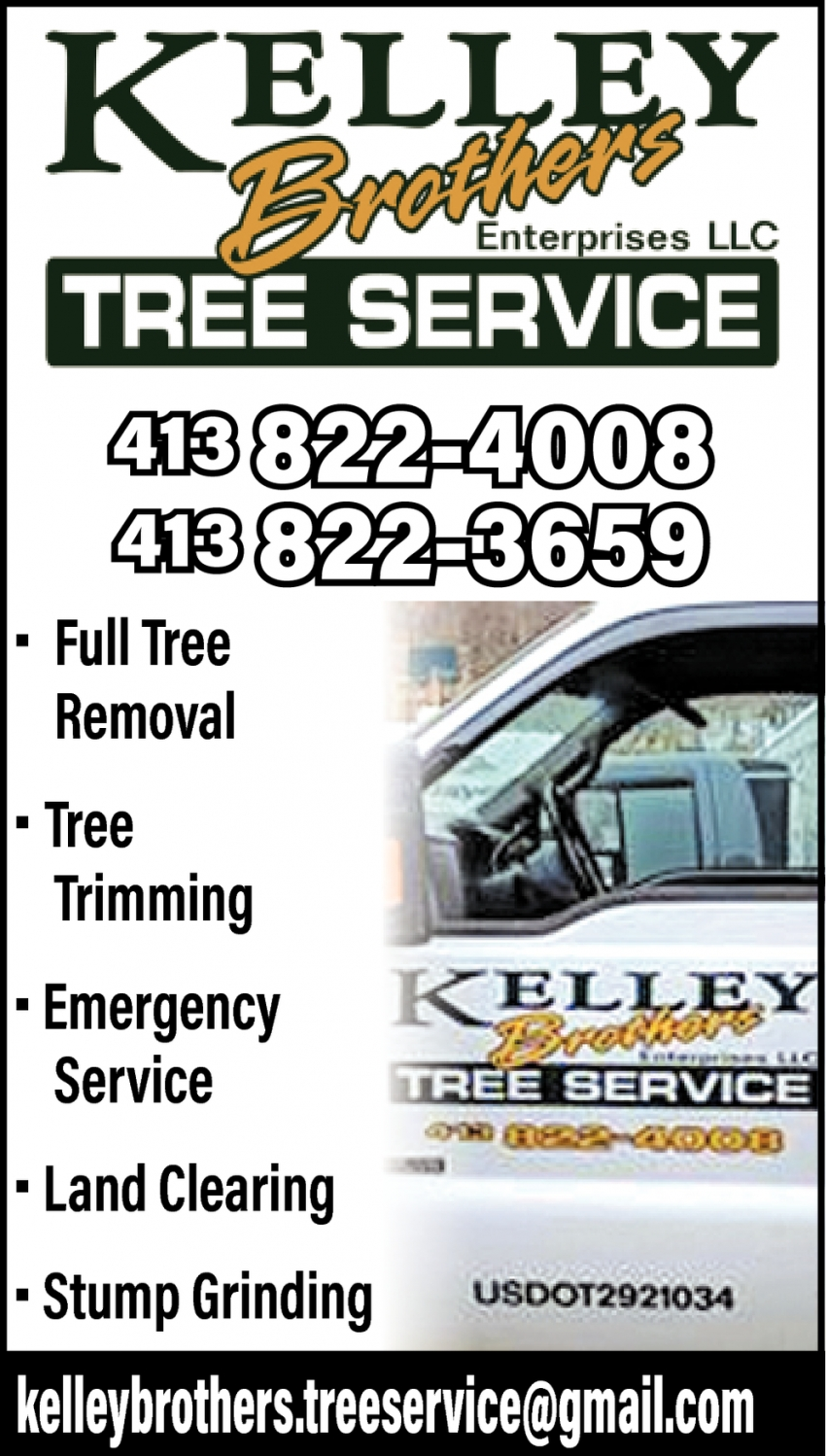 Full Tree Removal