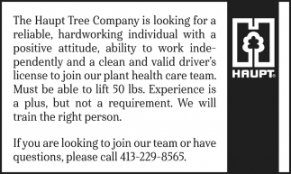 Looking for a Hardworking Individual