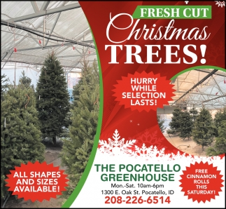 Buy Two Trees Or Shrubs and Get The Third One 1/2 OFF
