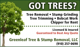 Tree Removal & Stump Grinding