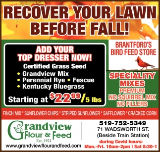 Recover Your Lawn Before Fall!