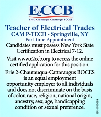 Teacher of Electrical Trades
