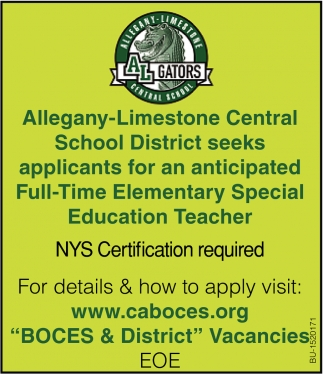 Full-Time Elementary Special Education Teacher