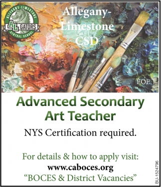 Advanced Secondary Art Teacher