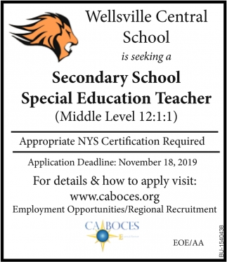Secondary School Special Education Teacher