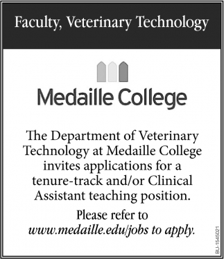 Tenure-Track and/ or Clinical Assistant Teaching Position