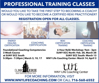 Professional Training Classes