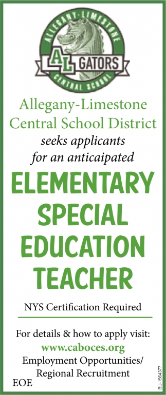 Elementary Special Education Teacher