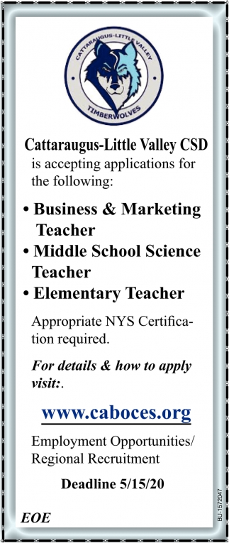 Business & Marketing Teacher