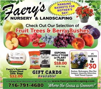 Fruit Trees & Berry Bushes