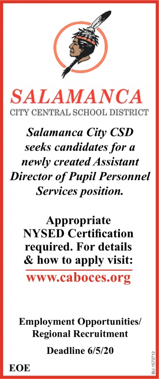 Assistant Director of Pupil Personnel Services