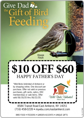Give Dad The Gift of Bird Feenig