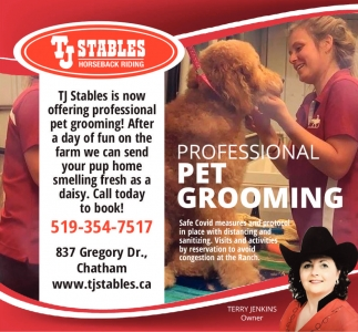 Professional Pet Grooming