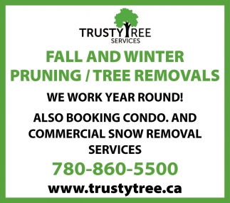 Fall And Winter Pruning/Tree Removals