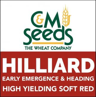 High Yielding Soft Red