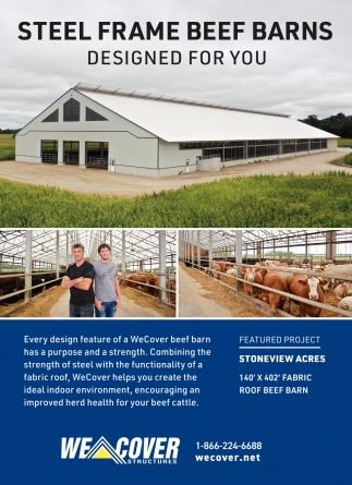 Steel Frame Beef Barns