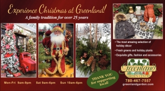 Experience Christmas At Greenland!