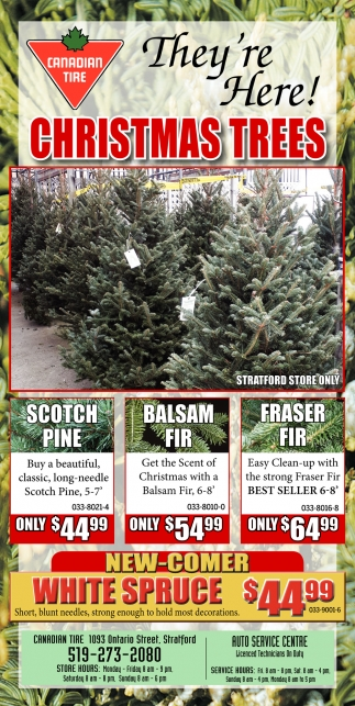 Christmas Trees Canadian Tire Stratford On