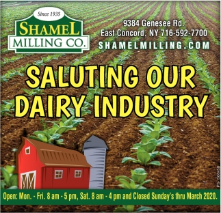 Saluting Our Dairy Industry