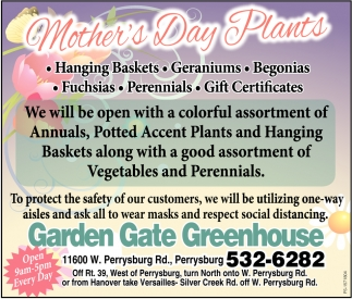 Mother's Day Plants